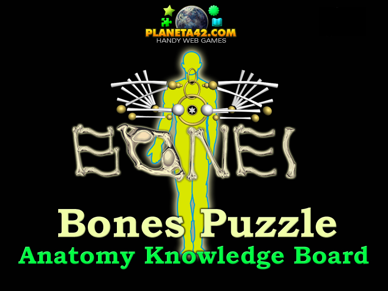 Human Bones Online Puzzle | Biology Learning Game