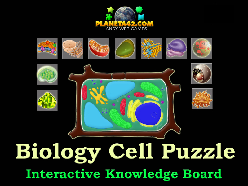 cell puzzle biology learning game. Black Bedroom Furniture Sets. Home Design Ideas
