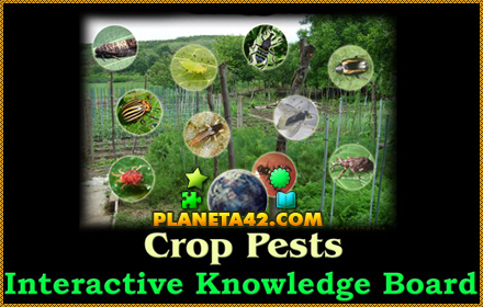 Crop Pests