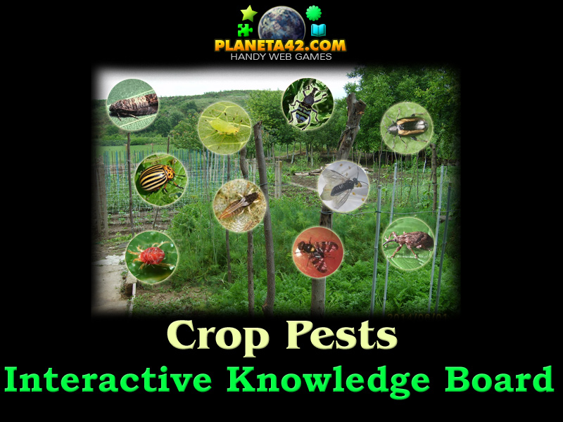 Crop pests free online game for Gardening tools 94 game answers