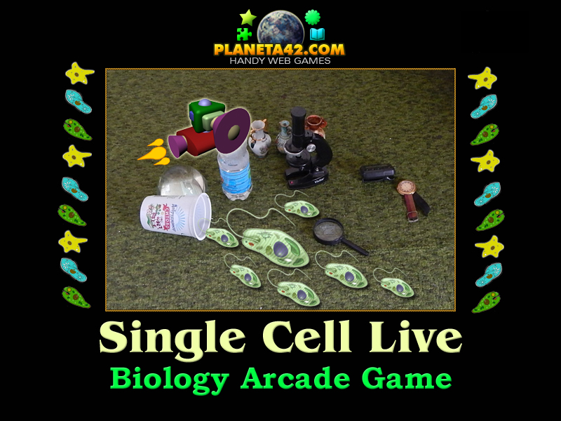Single Cell Live Game Picture