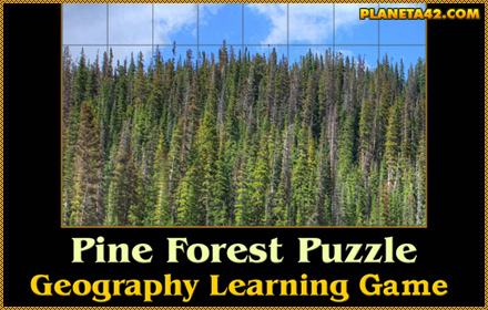 Pine Forest Puzzle