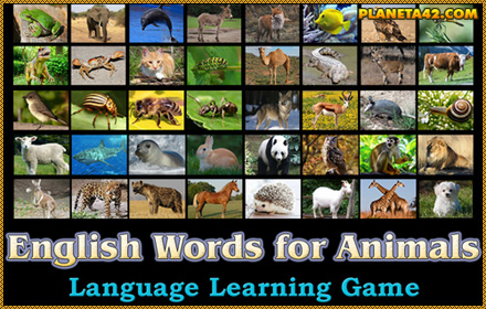 English Words for Animals