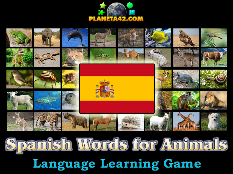 spanish words for animals language learning game