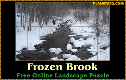 Frozen Brook Puzzle