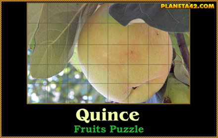 Quince Puzzle